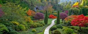 A designed garden, a designed life